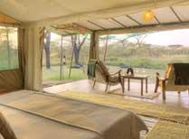 Kicheche Bush Camp