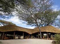 Oliver's Camp