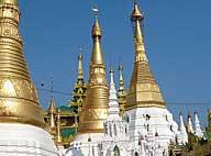golden spires