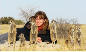 Meeting Meerkats