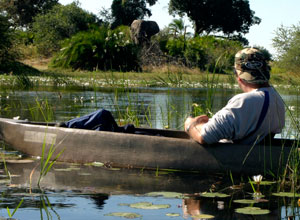 Take a mokor ride in the Okavango Delta