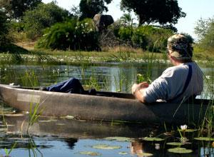 Take a mokor ride in the Okavango Delta