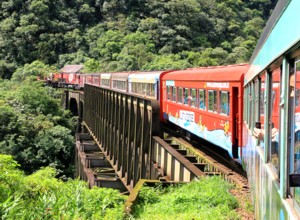 Take the Serra Verde Express to Morretes