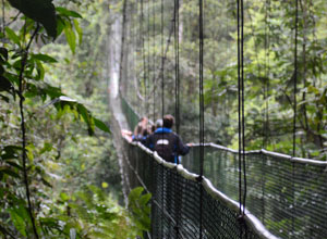 Walking across a hanging bridge in Arenal National Park