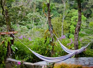Relax at Monteverde Lodge and Gardens