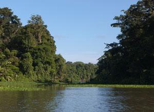 Tortuguero canal
