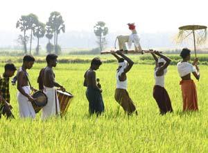 Local culture in Malabar, India