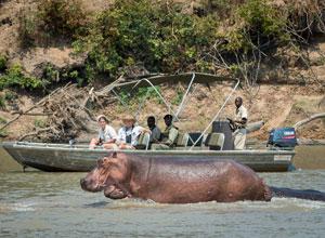 Boat safari on RPS River Journeys holiday