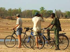 Cycling near Tafika Camp