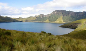 Highlands and Amazon