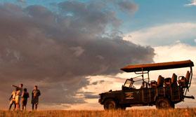 Desert and Dune Guided Safari