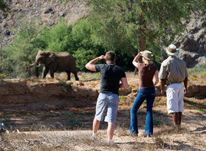 Damaraland Camp nature walk
