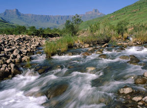 The Amphitheatre in the Drakensberg Mountains