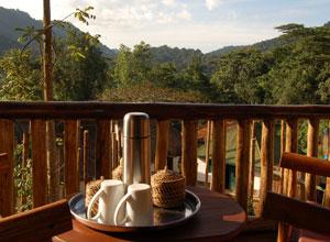 Tea on the terrace at Buhoma Lodge