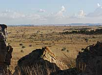 Isalo landscape